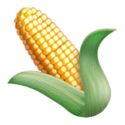 ear-of-maize.png