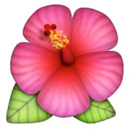 hibiscus emoji u 1f33a u e303. Black Bedroom Furniture Sets. Home Design Ideas