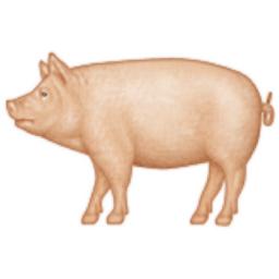 Pig Emoji U 1f416