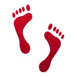 Footprints Emoji U 1f463 U E536